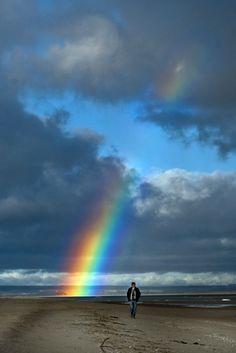 4utfish rainbow